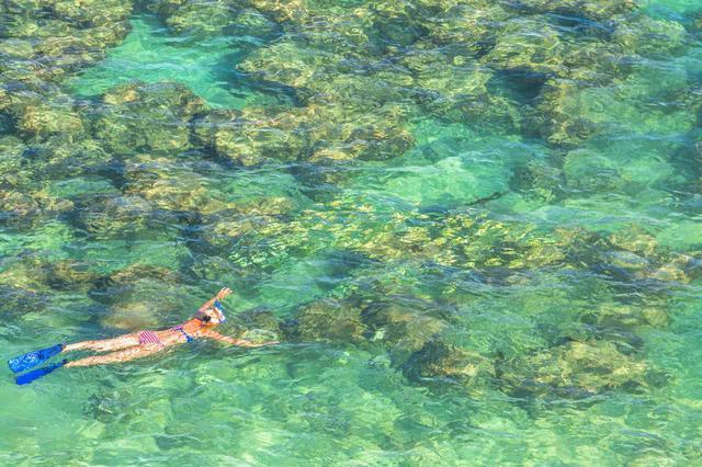画像: 透明度の高い海でシュノーケリングを満喫 (c) Shutterstock.com