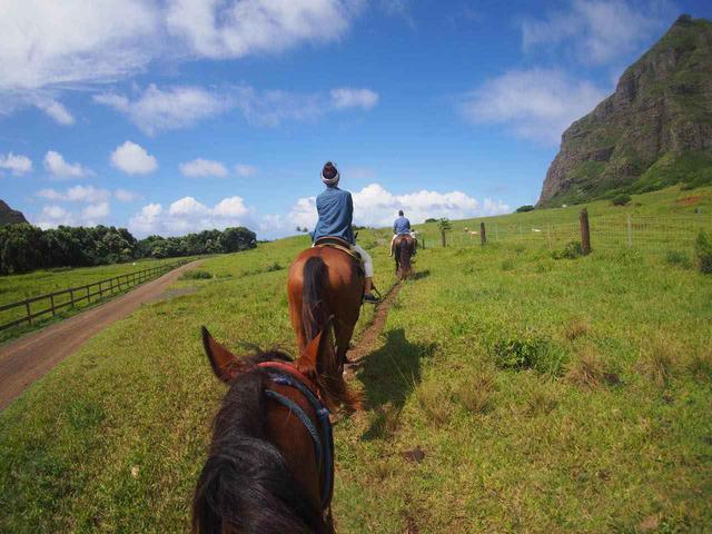画像: よく訓練された大人しい馬に乗って自然の中をお散歩