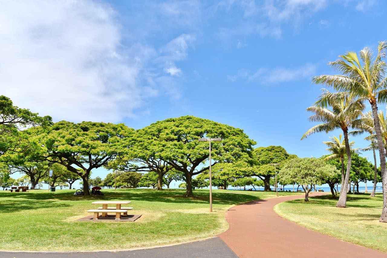 画像: 緑の公園ゾーンでのんびりする人も