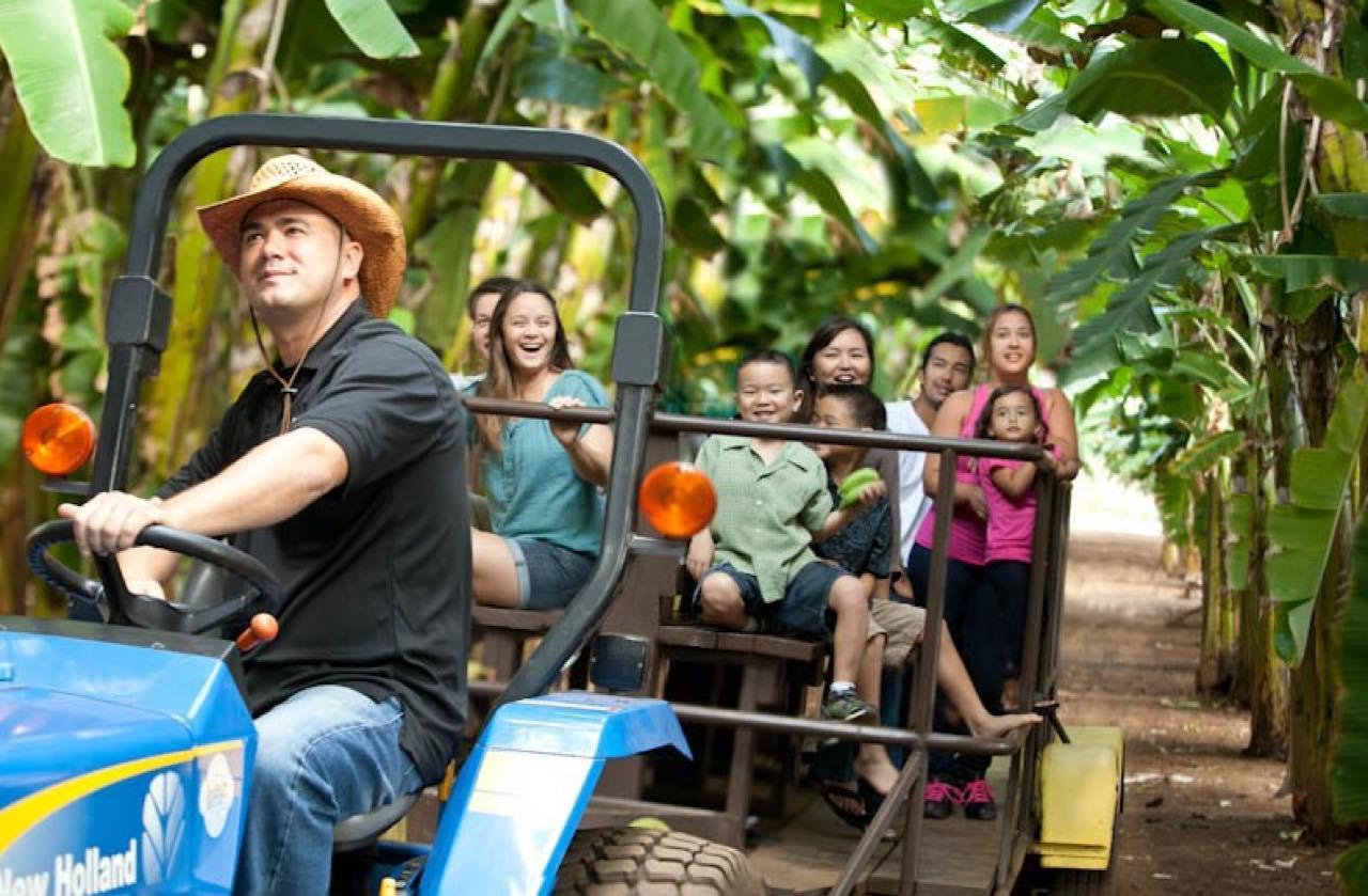 画像: ワゴン車で農場内を巡るグランドツアーへの参加がおすすめ