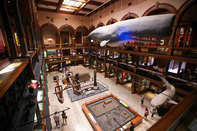 画像: ホノルル市の北西部にあるハワイ文化に関するミュージアム
