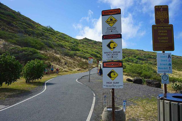 画像: しっかり舗装された道なのでハイキング初心者でも安心です