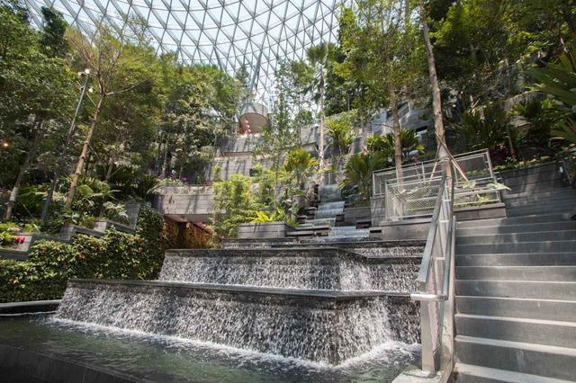 画像: 資生堂フォレスト・バレーはレイン・ヴォルテックスを中心に熱帯雨林を再現 写真提供:Changi Airport Group