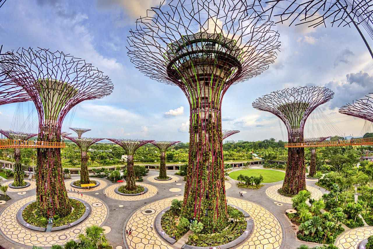 画像: スーパーツリー・グローブが集うとまるで異空間のよう Photo: Gardens by the Bay