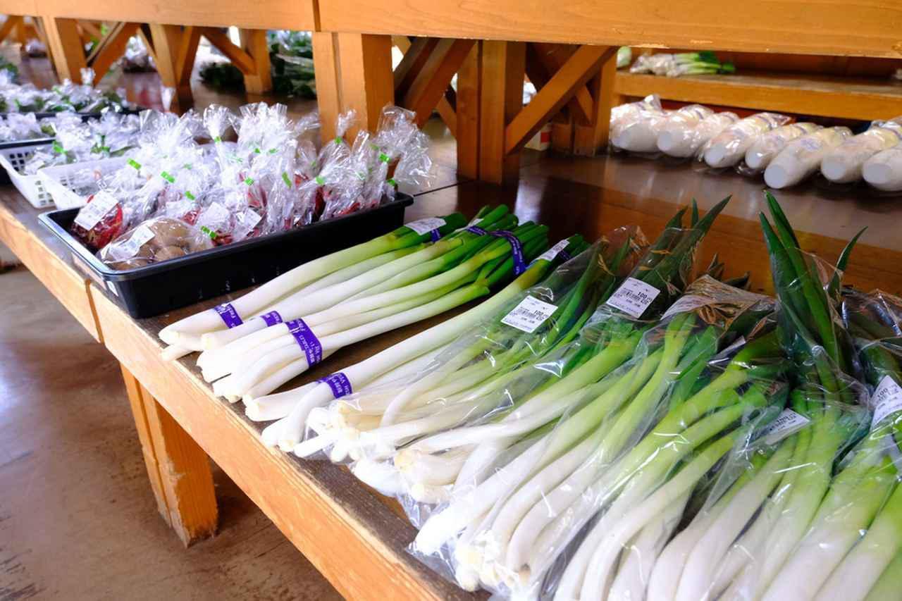 画像: うららの森には阿賀野市で育った野菜を購入できる「ゆうきふれあい即売所」があります。阿賀野市は早くから野菜作りに有機栽培で取り組んだ地域。新鮮で立派な野菜がなんともお安く手に入っちゃいます!