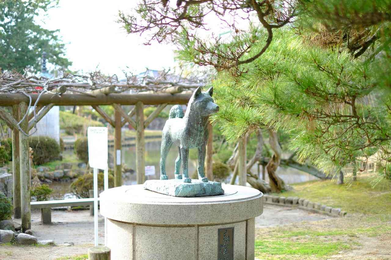 画像: 「忠犬タマ公」銅像もあります。タマ公は飼い主を雪崩から2度も救った犬ということで、新潟ではハチ公よりタマ公が有名です。新潟駅構内にもタマ公銅像がありますので探してみてくださいね。