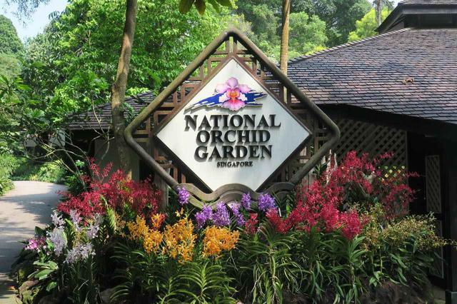 画像: 世界的にも名高いオーキッド・ガーデンでランの花を観賞