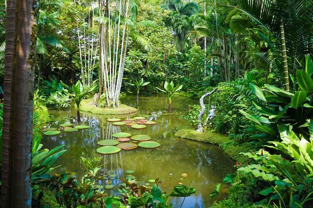 画像: シンガポール植物園はシンガポール唯一の世界遺産 Shutterstock.com