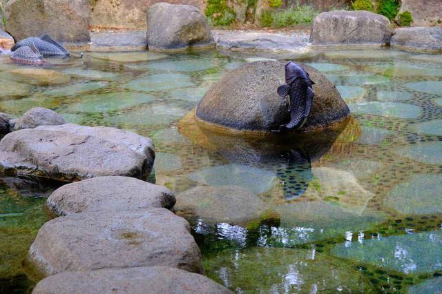 画像: 岩に囲まれた露天風呂も自慢です。深呼吸…深呼吸…と、私もしっかりラドンの湯気を吸いこみながら入りました。