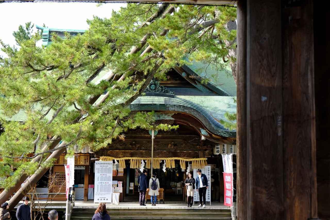 画像: 萬代橋を後にして、「白山神社」に向かいます。新潟県を代表する神社のひとつです。