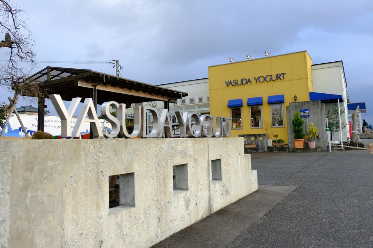 画像: さてようやく到着!「ヤスダヨーグルト」本社敷地内にあるショップへゴー。