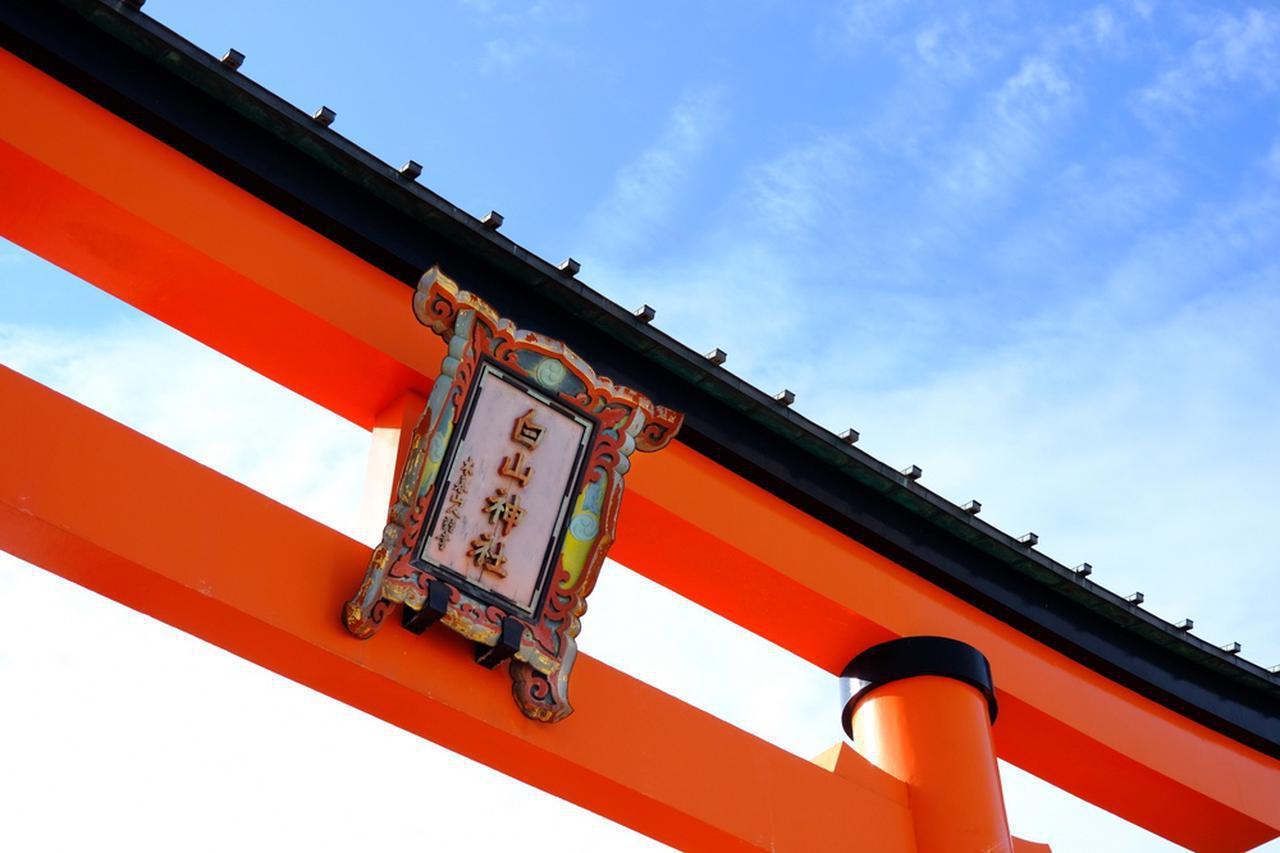 画像: 新潟は例年になく雪が少ない冬でした。この日は快晴でした。