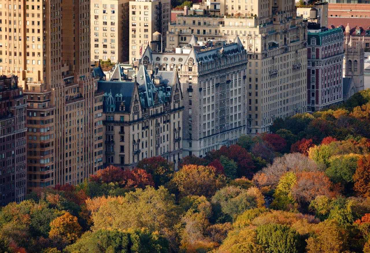 画像2: Shutterstock.com