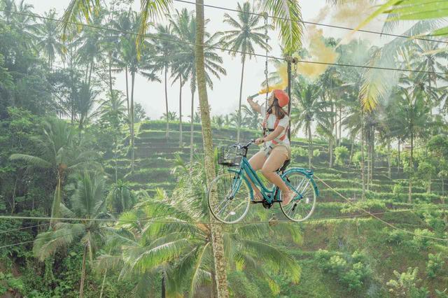 画像2: 3.【アラス・ハルム】巨大空中ブランコに乗って、森の中を舞う