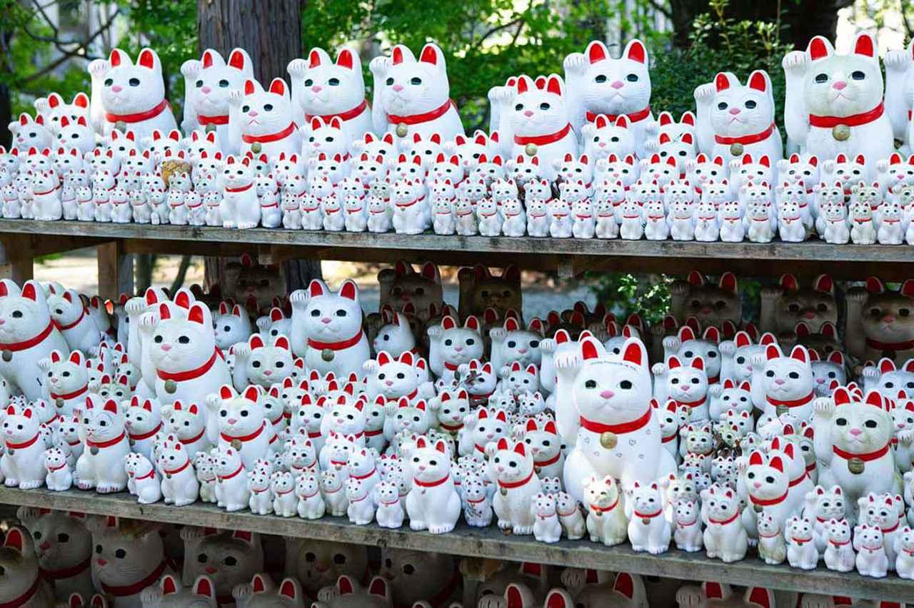 画像: 招き猫発祥の地「豪徳寺」。猫好きが集まる東京の穴場観光スポットの魅力