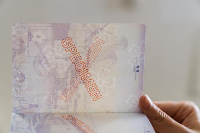 画像: このように透かして見ると、桜の文様が隠されていることがわかります。
