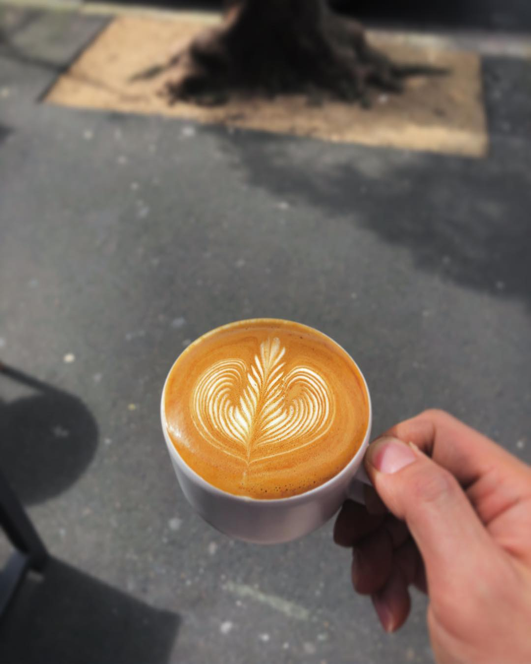 画像2: 5.コーヒー愛好家に密かな人気の穴場店『Primary Coffee Roasters』(プライマリー・コーヒー・ロースターズ)
