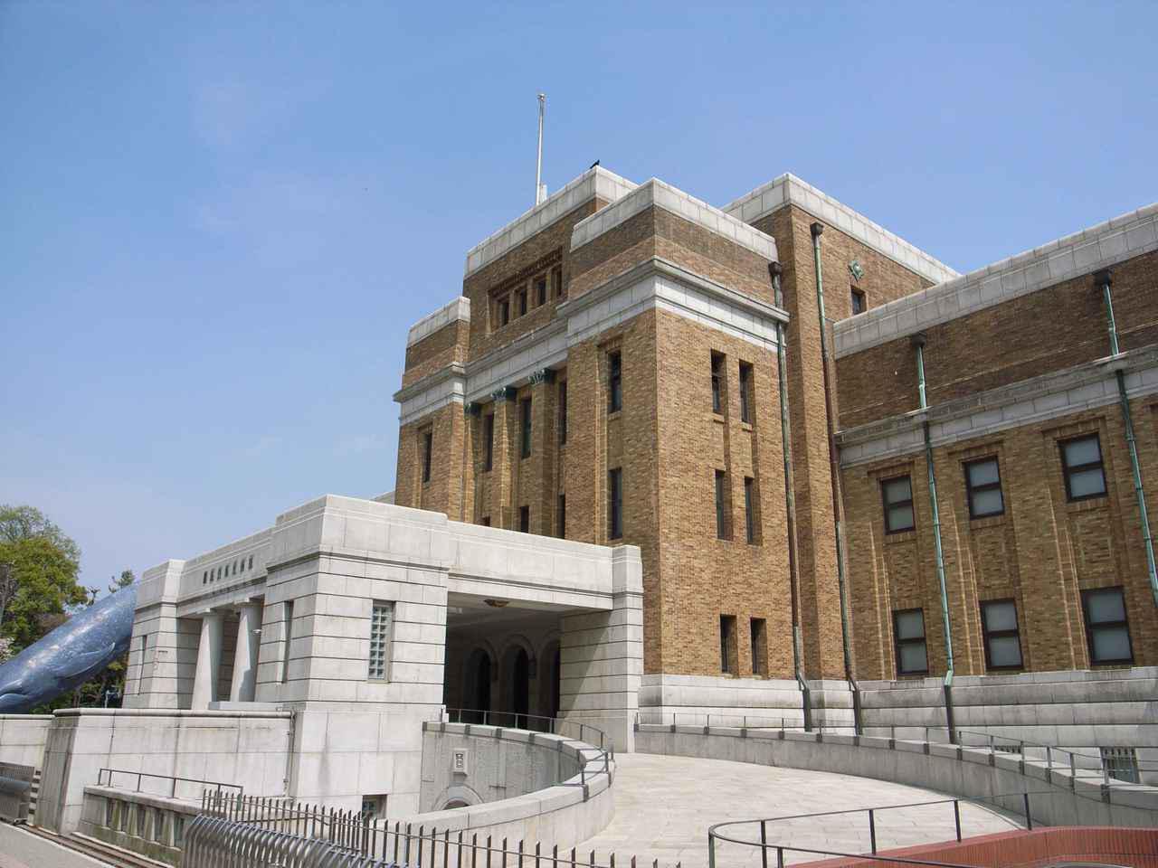 画像1: 提供:国立科学博物館