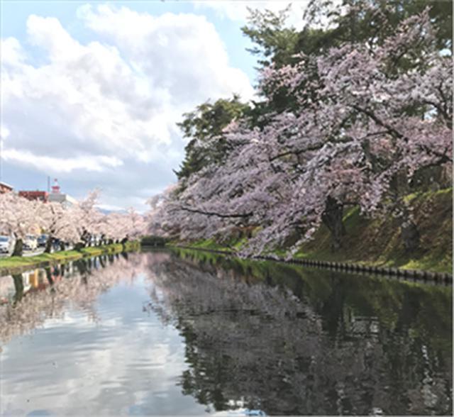 画像1: 必ず春はやってきます ~青森支店の#旅を夢見て~
