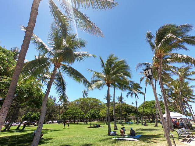 画像6: ハワイ現地スタッフ~ステイホーム期間の日常~