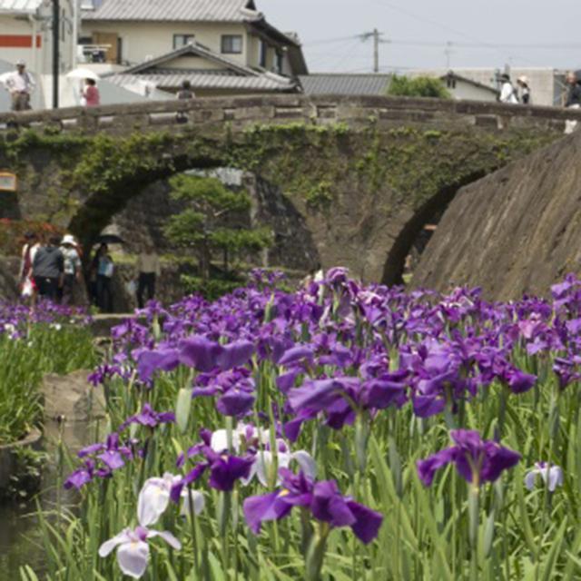 画像1: 熊本 玉名で「ゆる旅」いかがですか?