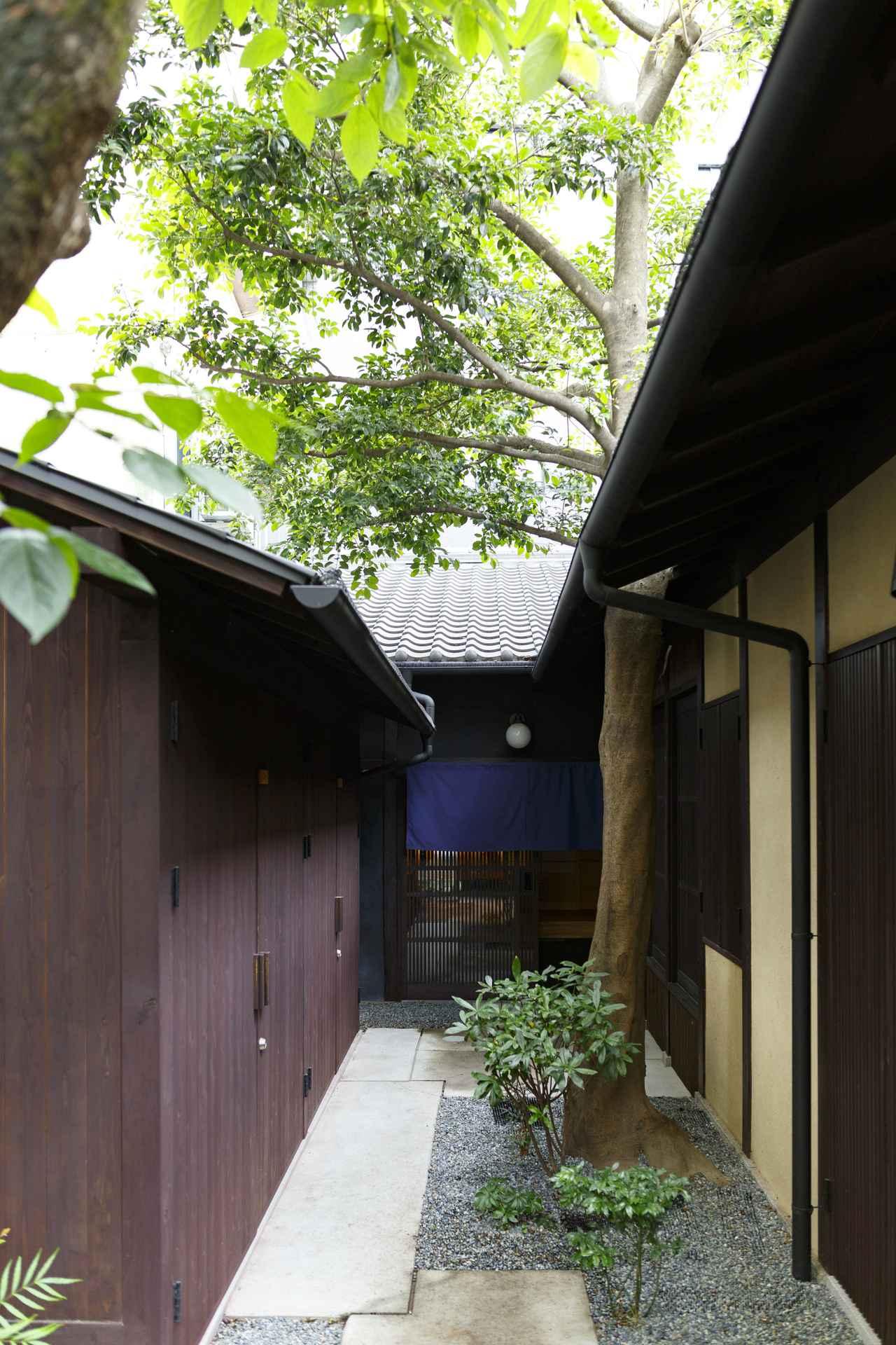 画像2: 【京都一軒町家 さと居 大宮五条 青柿(SEISHI)】路地奥でひっそり、静寂という贅沢に浸る