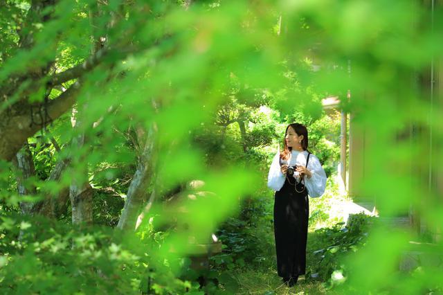 画像10: 【雲仙温泉 東園】自然の恵みに癒される時を