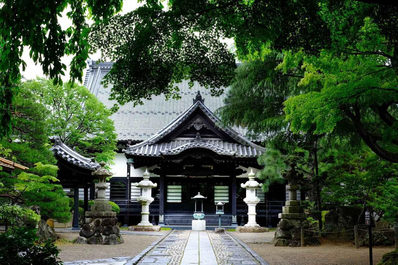 画像: 本堂の周辺も緑に囲まれていました。さらに奥に進むと庭園があります。