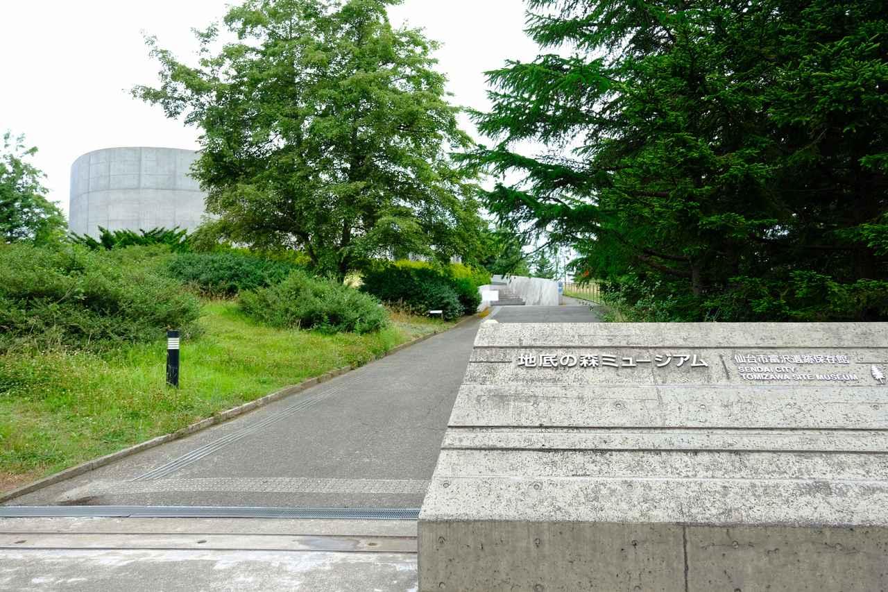 画像: 旧石器時代の森が見られる博物館「地底の森ミュージアム」へ。建物の中に「富沢遺跡」の一部が保存されています。
