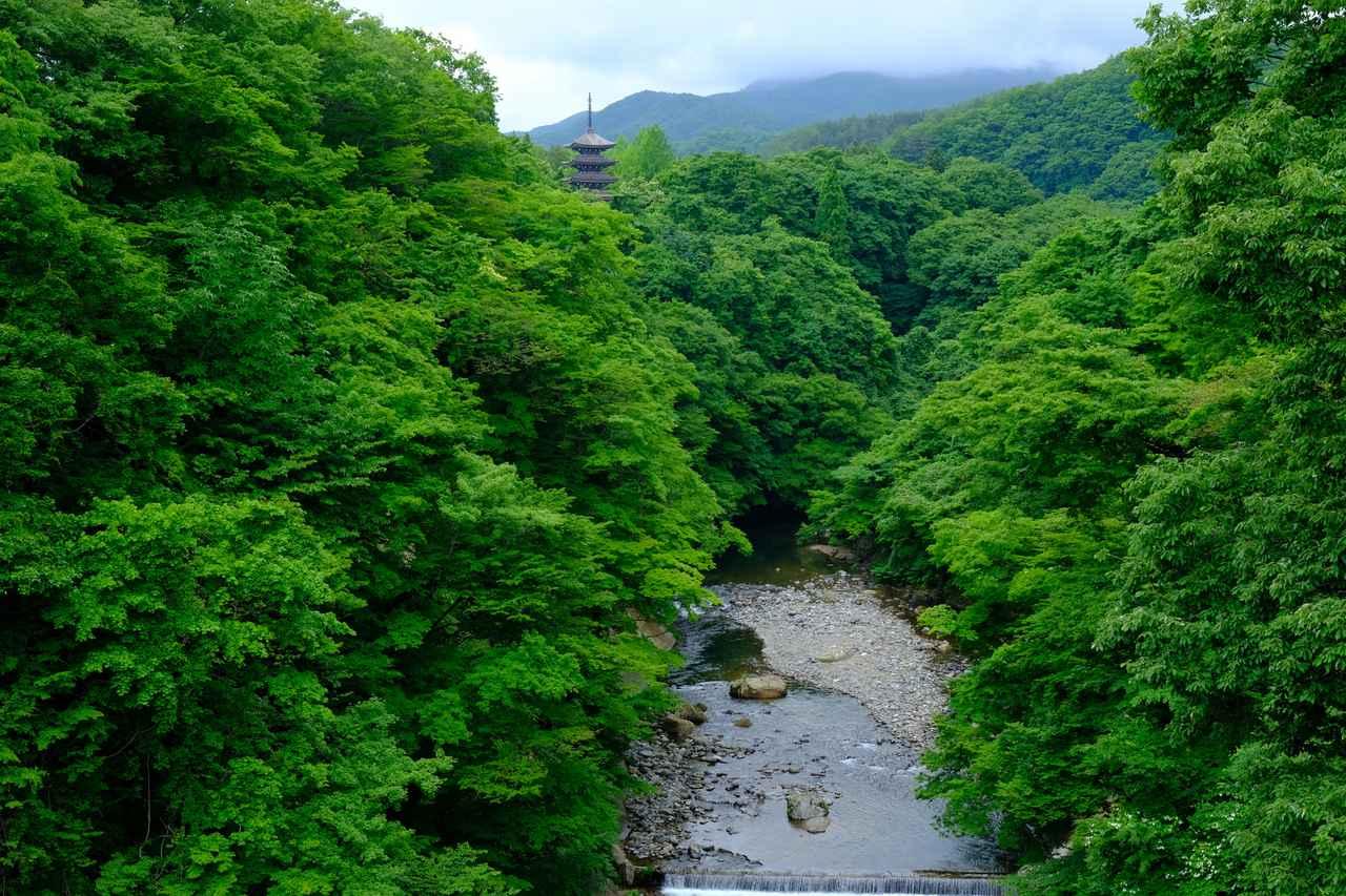 画像: 大倉川の清らかな流れと深い緑に包まれる五重塔を拝み、見どころいっぱいの定義山を後にしました。