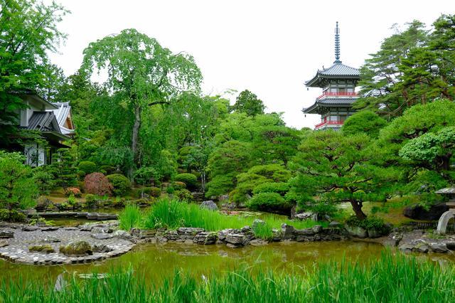 画像: 回遊式の庭園で池の周りをぐるりと散策できます。四季の花や木々が生い茂る景色、それらの池への映り込みなどが見る角度によってどんどん移り変わる楽しさ、また、三重塔との調和も見事です。
