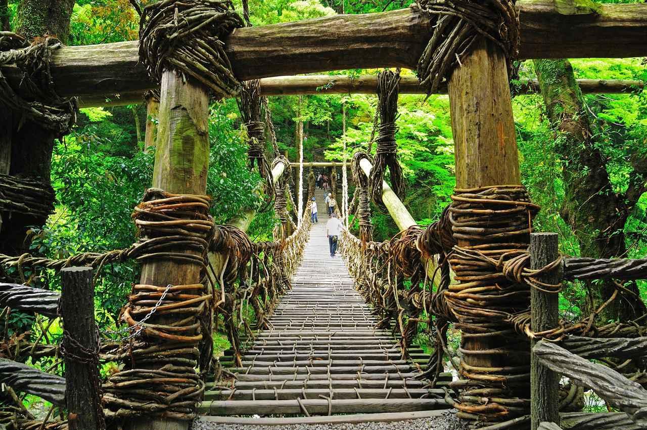 画像1: 【2日目】秘境ならではの絶景が満喫できる『祖谷のかずら橋』