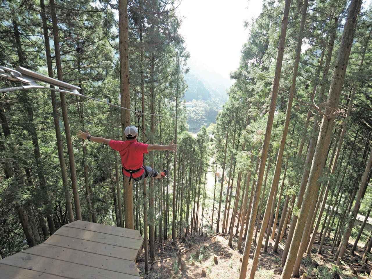 画像3: 『フォレストアドベンチャー・祖谷』でエキサイティングな樹上体験を