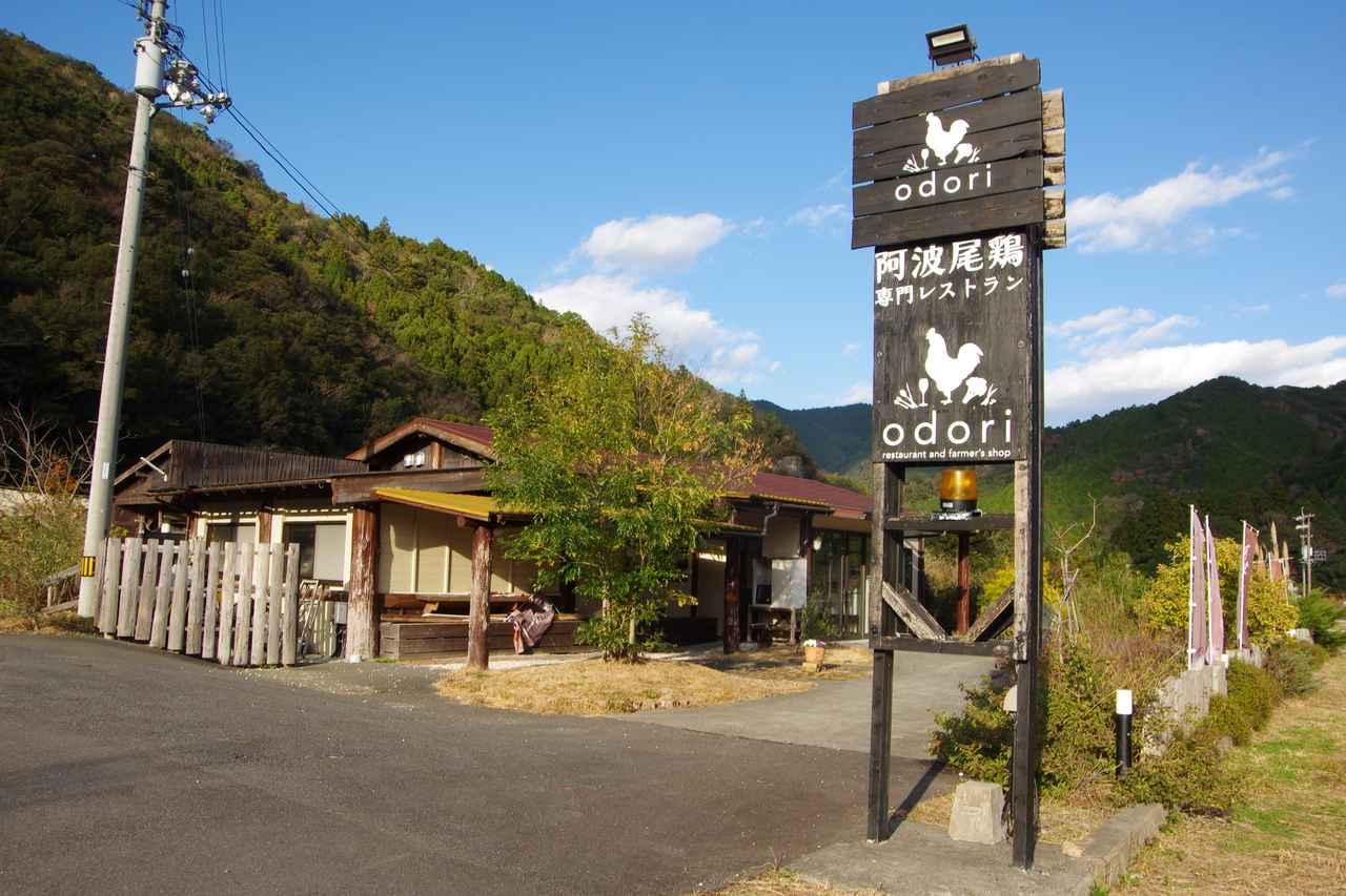 画像1: 徳島のブランド鶏・阿波尾鶏をランチとスイーツで楽しめる『odori』
