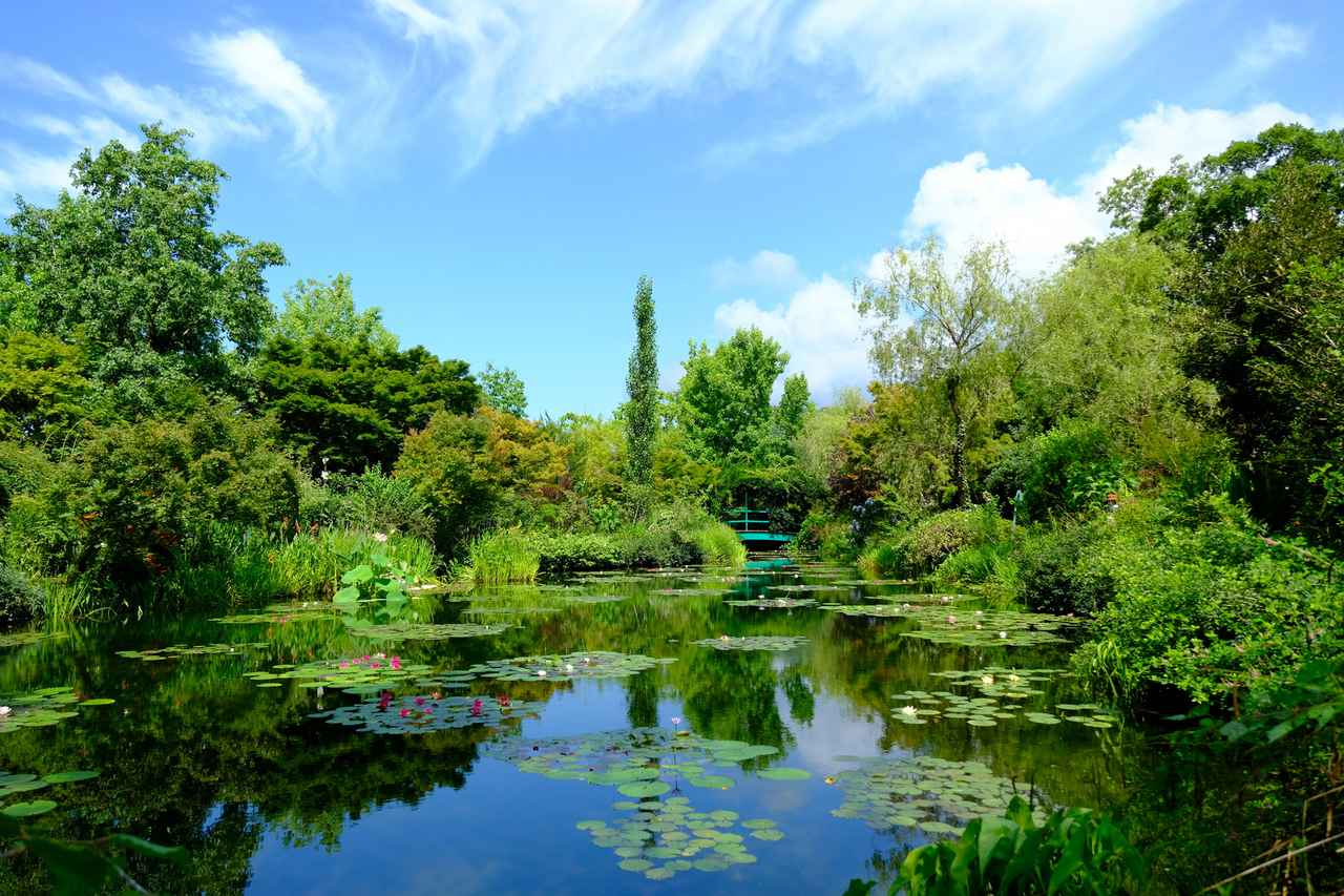 画像: 宿を後にして向かったのは「北川村モネの庭 マルモッタン」。