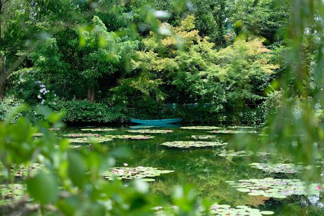 画像: 水鏡に映り込む木々や四季を楽しめるよう、日々の手入れを欠かさないそう。本家フランスやモネの絵画の世界観を見事に再現し、自分も絵の中にいるような感覚になれます。