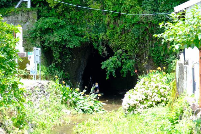 画像: 国道脇に突然現れる洞窟の入口。ここが「伊尾木洞」です。短いコースだと数十分でまわれます。