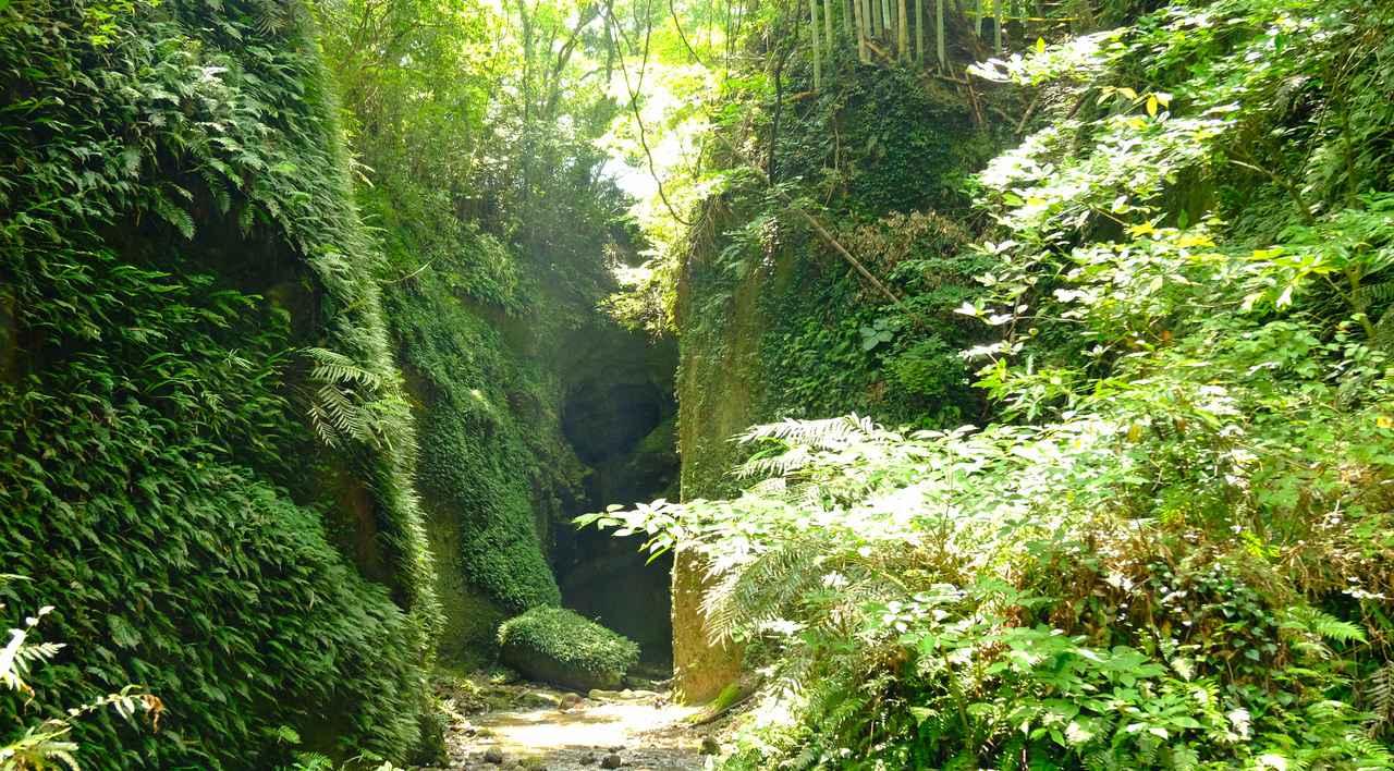 画像: 安芸・伊尾木には数万年かけて作られた洞窟があります。