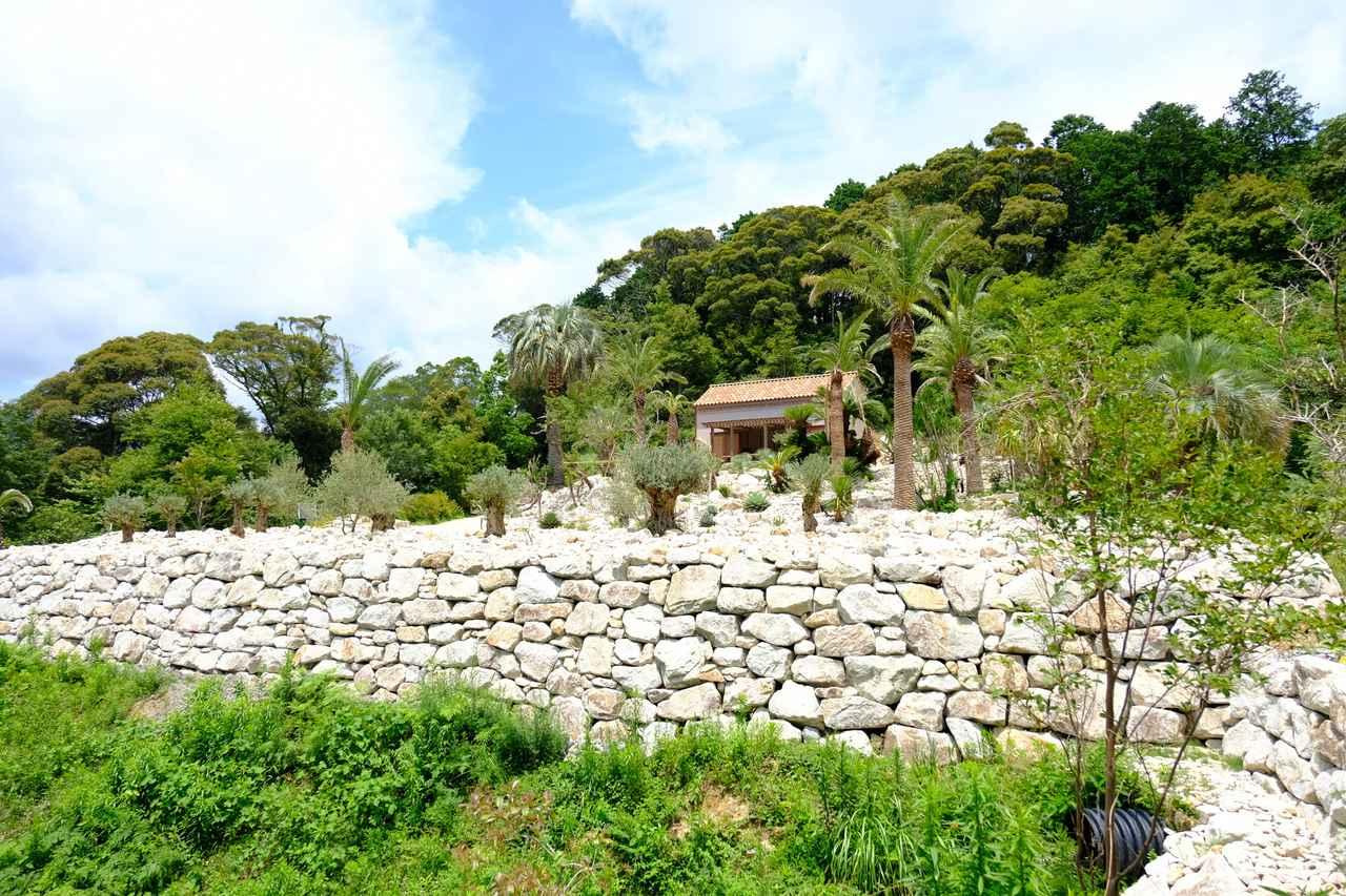 画像: モネが気に入り何度も訪れた北イタリアの町・ボルディゲラを体感できる庭エリア。高いところまで登ると土佐湾の青い海も見えます。