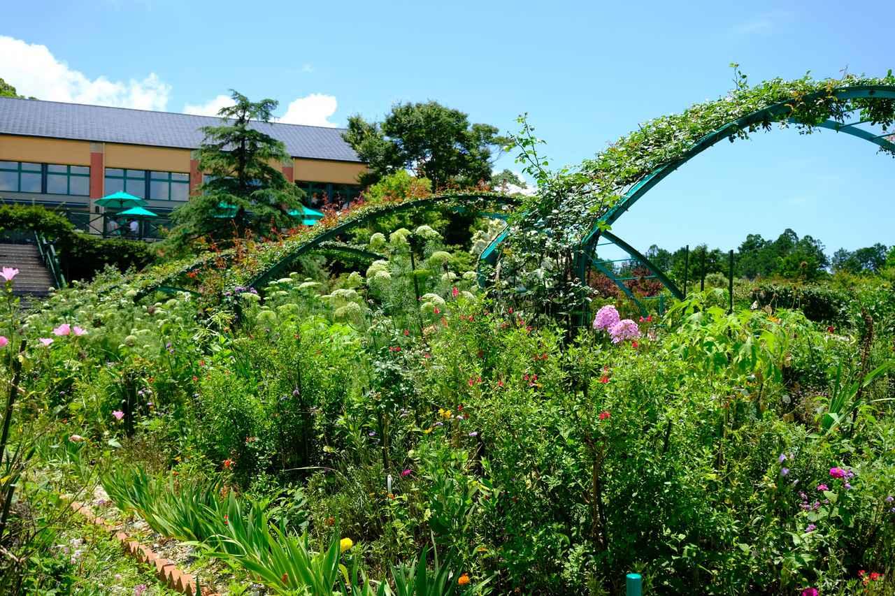 画像: 高い場所にあるレストランのテラス席からは「花の庭」エリアが一望できます。