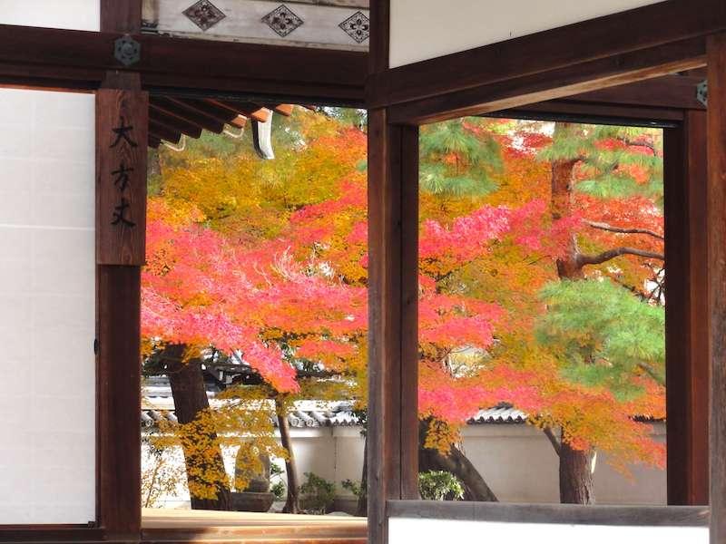 画像: 僧侶兼マンガ家が案内する秋の京都・左京区 紅葉とお念仏