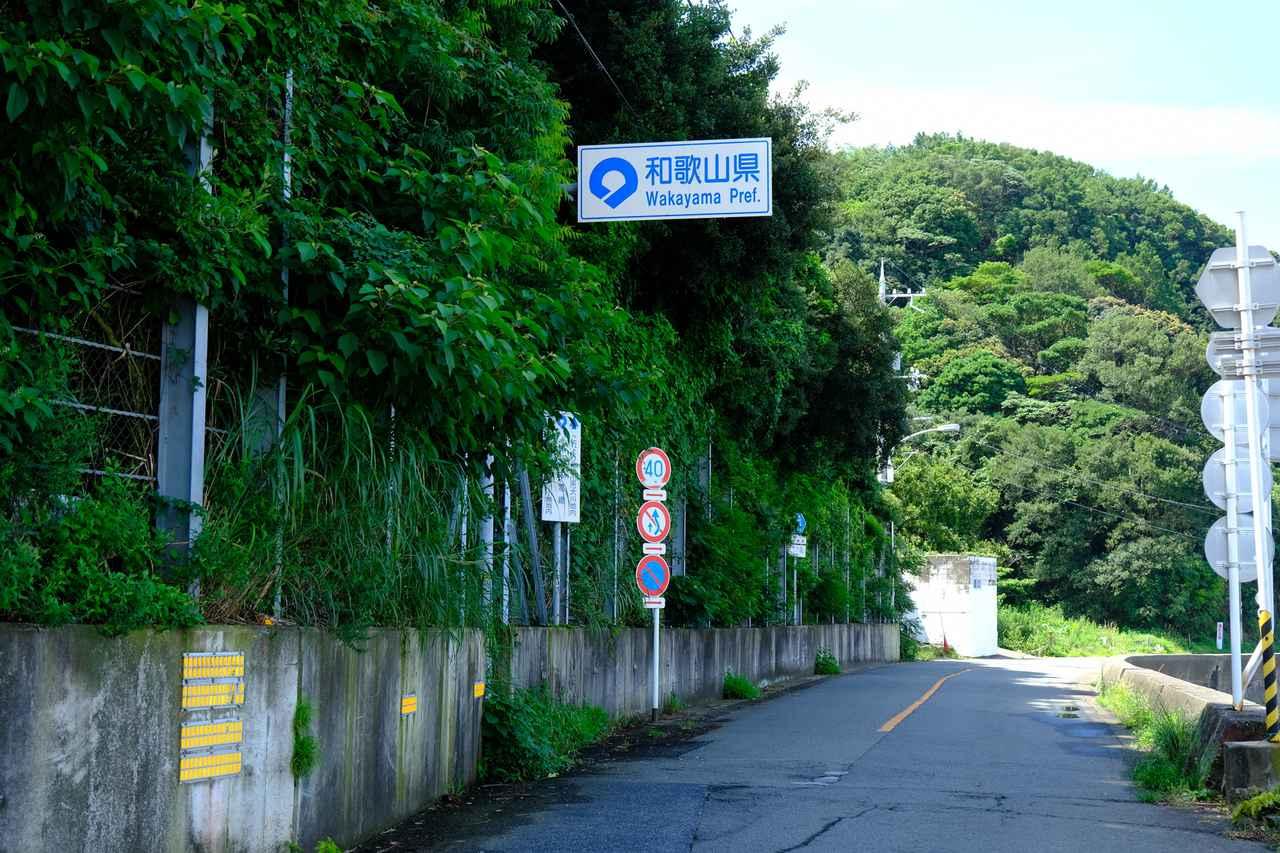 画像: とっとパーク小島から自転車で10分くらい走るともう和歌山県!ついに県境まで来た…と感慨深いです。