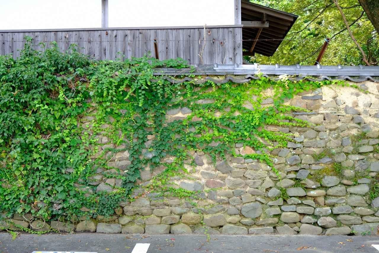 画像: 船守神社はこの石垣が見えてくるともう参道が近いです。