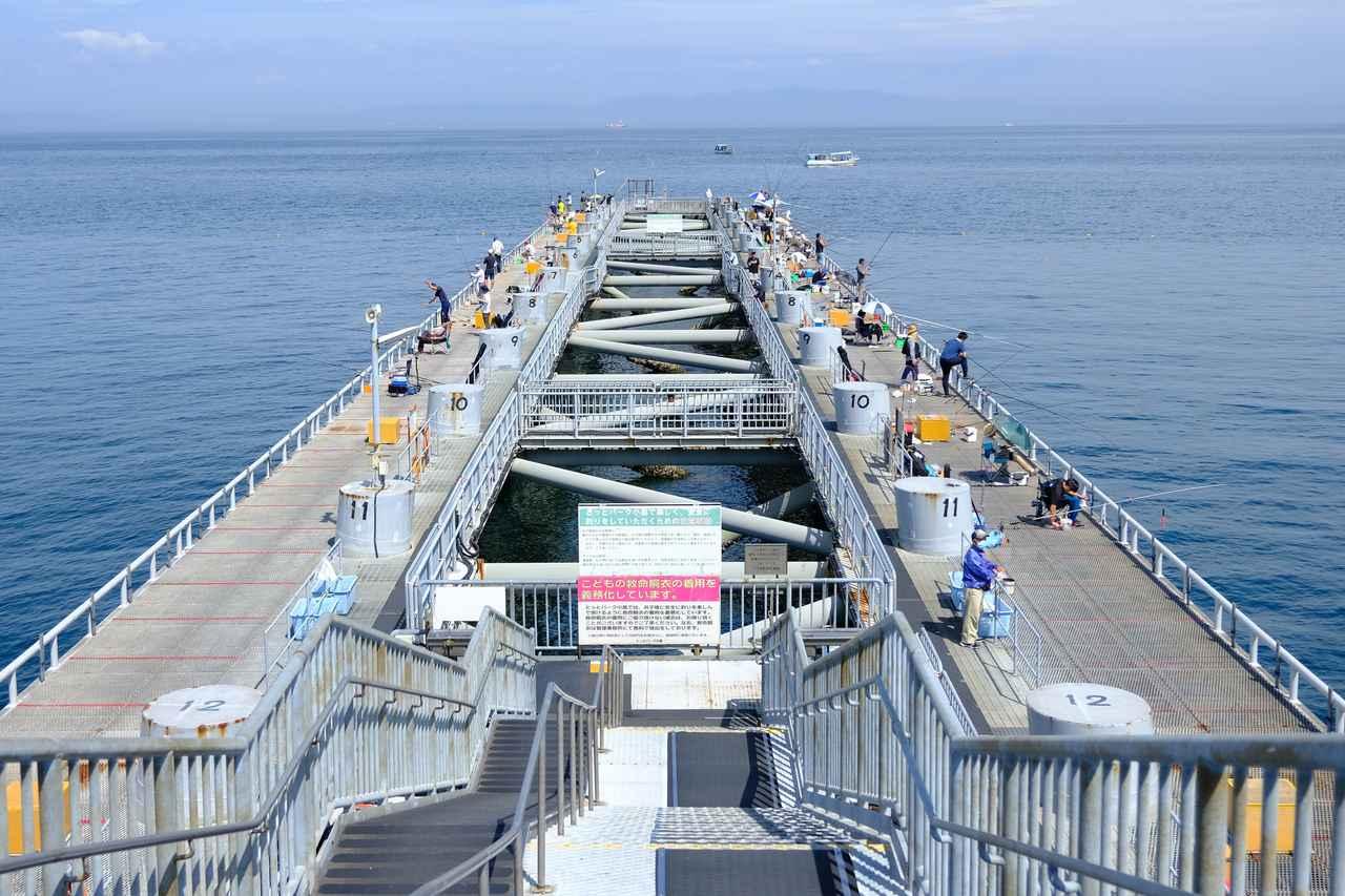 画像: 釣り場はこんな風になっています。長い桟橋なので、陸続きなのに沖釣りをしているような感覚でしょうか。