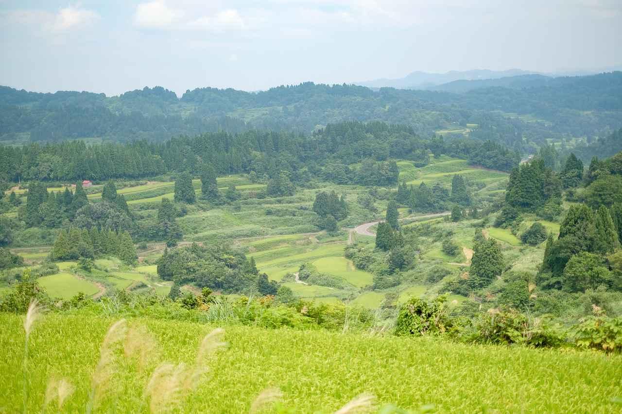 """画像: 自然豊かな新潟県十日町市で、""""ウィズコロナ""""時代の旅を満喫"""