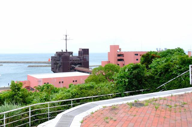 画像: ホテルと海の間には「大阪府青少年海洋センター」があり、海アクティビティの拠点となっています。