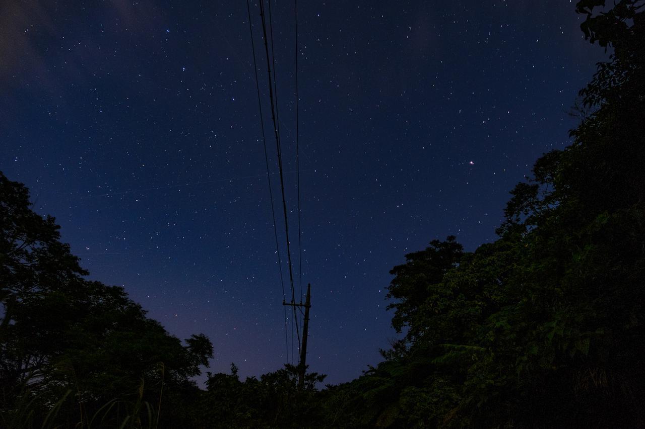 画像: iStock.com/Shoko Shimabukuro