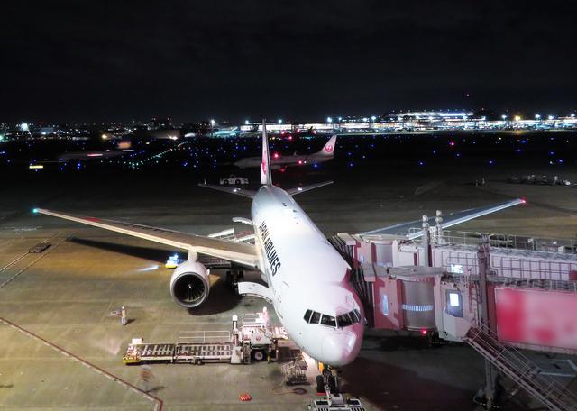 画像: 飛行機の左ドアから乗降する理由、ご存じですか?フライトがより楽しくなる7つの飛行機雑学