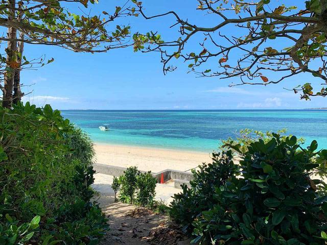 画像1: 穏やかな秋風の季節には沖縄本島北部へ。コロナ禍でも営業を続ける各地の取り組みをレポート