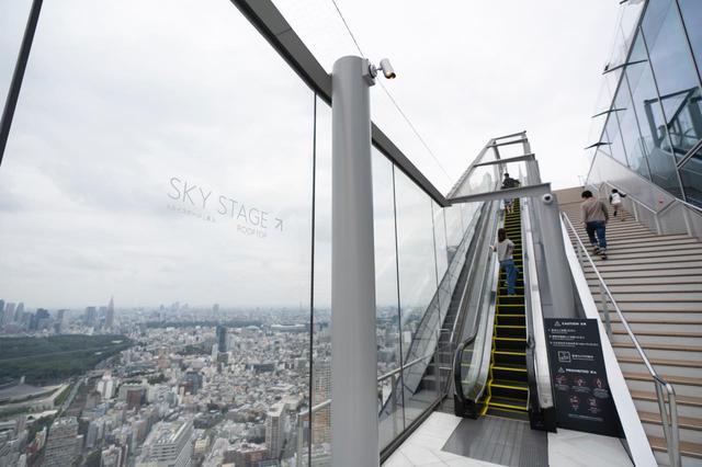 画像3: 渋谷、浅草、お台場…東京の人気観光地の「今」をレポート